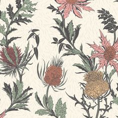 Thistle wallpaper by Cole and Son is a beautifully illustrated floral motif desi Wallpapers Orange Wallpaper, Print Wallpaper, Home Wallpaper, Amazing Wallpaper, Thistle Wallpaper, Botanical Wallpaper, Wallpaper Direct, Wallpaper Online, Orange Tapete