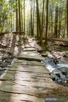 Hike the Raven Cliff Falls Trail 5.1 miles through a waterfall-filled valley to one of Georgia's most popular and beautiful waterfalls.