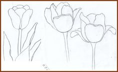 Weekly : Doodles and tuts: How to draw a Tulip: Method 3 Doodle Drawings, Drawing Sketches, Pencil Drawings, Sketching, Tulip Drawing, Painting & Drawing, Watercolor Art Lessons, Flower Doodles, Nature Journal