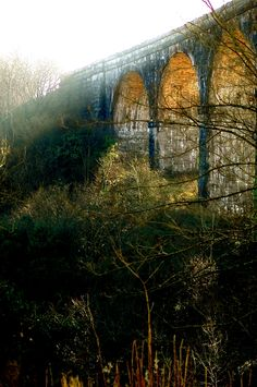 Viaduct, Merthyr Tydfil, South Wales. David Norrington