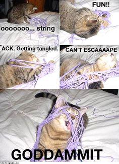 Ooooooo… string