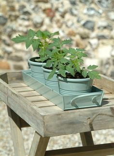 Set of 3 small pot plants in Shutter Blue at Garden Trading