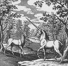 Engraving, 1625. Red Deer and Unicorn in a forest - Alchemic engraving - Lambspring, De lapide philosophico figurae et emblemata, figure III, In the Body there is Soul and Spirit. 'Lambspring' book? http://www.levity.com/alchemy/lambtext.html
