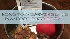 Kong Toy + Darwin's Lamb = Raw Food Puzzle Toy was last modified: February 21st, 2017 by