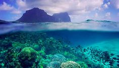 8 snorkel destinations that will blow your mind