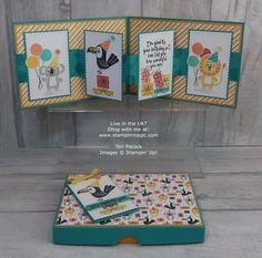Stampin' Up! UK Demonstrator - Teri Pocock: Bonanza Buddies - Pop Out Panel Card - Video Tutorial Fun Fold Cards, Pop Up Cards, Folded Cards, Kids Birthday Cards, Birthday Greeting Cards, Teen Birthday, Birthday Gifts, Duck Tape Crafts, Diy Inspiration