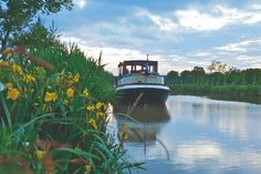 Pledging to get back to nature, Rhiannon Rees embarks on a leisurely cruise along France's most famous waterway – and becomes hopelessly smitten with life in the barge lane. Le Canal Du Midi, Spring Fever, 12th Century, Back To Nature, Tour Guide, Luxury Travel, Cathedral, Places To Go, Cruise