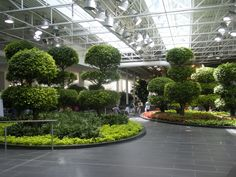 Devonian Gardens on floor of building in downtown Calgary is reopened Canadian Travel, Sea To Shining Sea, Weekend Getaways, Calgary, Garden Landscaping, Architecture Design, Cool Designs, Places To Go, Things To Do