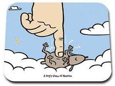 Cuando los perros se van al cielo