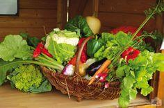 Panier de fruits et légumes Chapeau de Paille
