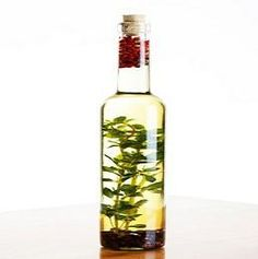 How to Make Oregano Oil- This stuff works great. Hoping to save some money and create my own!!!