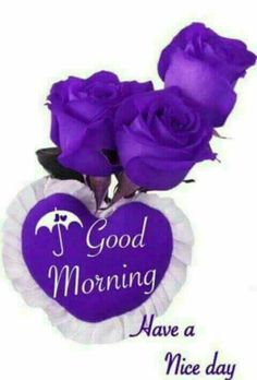 Good morning sister have a nice day 💟💝💖 Happy Tuesday Morning, Happy Morning Quotes, Morning Greetings Quotes, Morning Messages, Morning Sayings, Afternoon Quotes, Monday Morning, Morning Morning, Good Morning Good Night