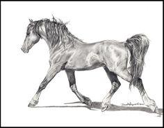 Horse<3