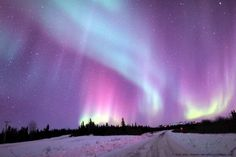 Aurora seen near Fairbanks, Alaska on March Credit and copyright: John Chumack. Aurora Boreal Alaska, Beautiful Sky, Beautiful Landscapes, Alaska Northern Lights, Aurora Sky, Fairbanks Alaska, Universe Today, Images Google, Bing Images