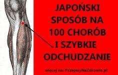 PrzepisyNaZdrowie.pl-punkt-100-chorob-japonski-sposob-na-choroby-odchudzanie