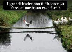 Grandi leader