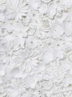papercut flowers. Put that in a box frame and hang it. Textured art - gorgeous! #papercut #flowers #white