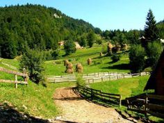 Apuseni by Ana Pana on Visit Romania, Natural Park, Tourist Places, Eastern Europe, Natural Wonders, Wonderful Places, Travel Destinations, National Parks, Places To Visit