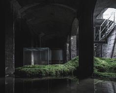 japanese architect hiroshi sambuichi has staged an ambitious installation within a former underground water reservoir in copenhagen.