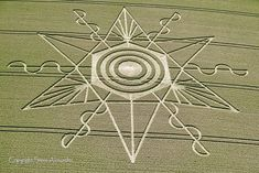 In keeping with recent years; this season's crop circle activity has taken a…