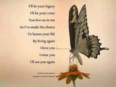 for my boys who lost their pilot.