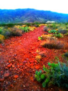 Red Rock Trail, El Paso, Texas