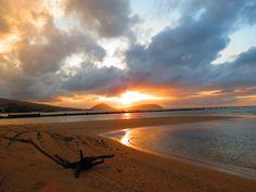 . . . a driftwood on the sand . . . a beautiful early morning sunrise . . . Kahala Beach, Honolulu, Hawaii.  6:40am Pacific Time