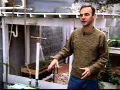 Inventor cria sistema caseiro para reaproveitamento de água - YouTube
