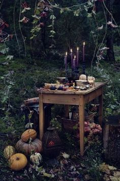 Enderi alter.  Bring the woods in to decorate, branches, leaves, moss, donated dear antlers, fallen feathers, pine-cones and the like.   Change the home fragrance into rich autumn scents, plums, pumpkins, woods, pine, or fireside scents.