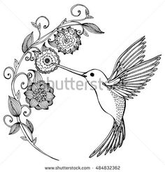 Flying Hummingbird. Hummingbird and flowers. Stylized bird. Hummingbird drinking nectar from flower. Line art. Drawing by hand. Doodle. Tattoo. Graphic arts.