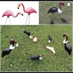 Turn pink flamingos into vultures for Halloween Halloween Prop, Outdoor Halloween, Diy Halloween Decorations, Halloween 2020, Holidays Halloween, Halloween Treats, Happy Halloween, Halloween Stuff, Halloween Maze