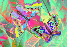Butterflies on Croton Leaves by Caroline Street Plant Art, Fine Art America, Butterflies, Original Art, Instagram Images, Greeting Cards, Gardens, Leaves, Wall Art