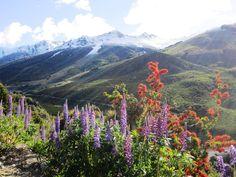 Cerro Catedral, San Carlos de Bariloche, Patagonia, Argentina.
