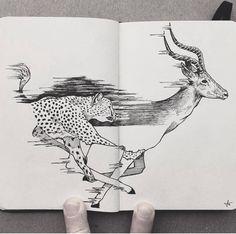 Cheetah gazelle