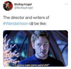 Superhero Movies, Marvel Movies, Superhero Ideas, Mcu Marvel, Marvel Dc Comics, Marvel Gems, Wanda And Vision, Scott Lang, Funny Marvel Memes