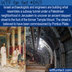 Israeli archaeologists and engineers are building what resembles a subway tunnel under a Palestinian neighborhood in Jerusalem to uncover an ancient stepped street to the foot of the former Temple. Wtf Fun Facts, Funny Facts, Interesting History, Interesting Facts, Dark Humour Memes, Ancient Mysteries, The More You Know, Ancient Architecture, History Facts
