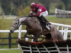 Petite Parisienne is a wide margin winner of the juvenile Champion Hurdle at Punchestown.