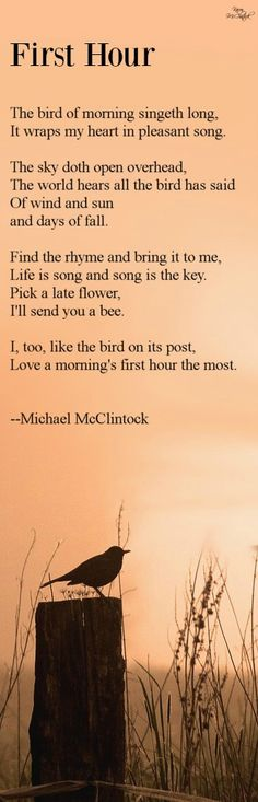 Poem: First Hour -- by Michael McClintock.