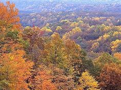 Brown County- Nashville, Indiana  beautiful in the Fall