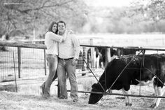 Engagement photo shoot at Irene dairy farm Couple Photography, Engagement Photography, Deep Sea Fishing, Engagement Shoots, Irene, Photo Shoot, Dairy, Couple Photos, Couples