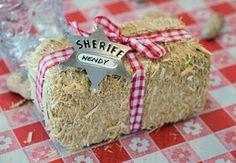 Make rice crispie treats to look like bales of hay (favor idea)