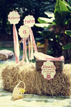 Pink Farmyard 2nd Birthday Party - Kara's Party Ideas - The Place for All Things Party