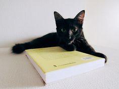 Malu Campos: Um livro até pra quem não gosta de ler #1