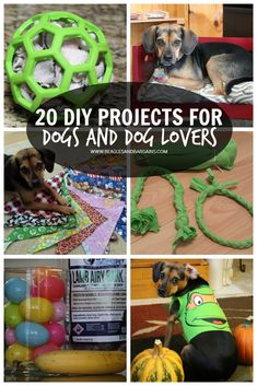 20 DIY Projects for Dogs and Dog Lovers, Pet Craft Projects | http://www.beaglesandbargains.com/20-diy-projects-dog-lovers/