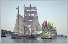 Beautiful Sail Boats