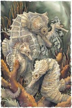 Jody Bergsma, one of my all time favorite Puget Sound area artists. I think I need a print of this one! by kristy Sea Life Art, Sea Art, Seahorse Art, Seahorses, Seahorse Painting, Sea Dragon, Mermaids And Mermen, Ocean Creatures, Under The Sea