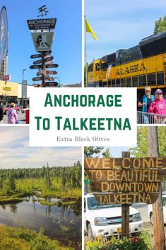 Train ride from Anchorage to Talkeetna - Extra Black Olives Train Tracks, Train Rides, Alaska Train, Talkeetna Alaska, Alaska Railroad, Kenai Fjords, Train Tour, New York Daily News, Local Women
