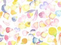 色とりどりの花びら