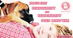 Do you think your dog got such personality, if    Not visit WhatsPup for best dog accessories