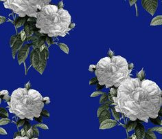 Redoute' Roses ~ Riot of  White Blooms on Bandy Blue  fabric by peacoquettedesigns on Spoonflower - custom fabric